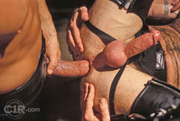 Hot leather daddies fuck in sling
