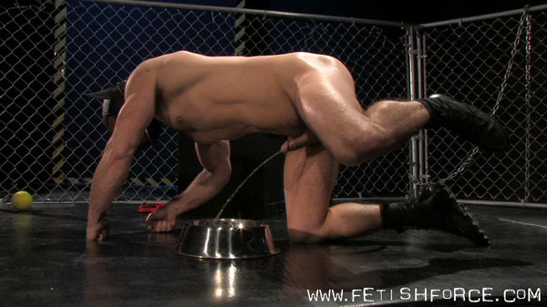 Dirk Caber pisses in a dog bowl
