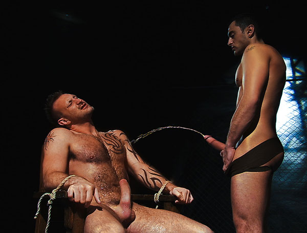 Tibor Wolfe soaked and stuffed