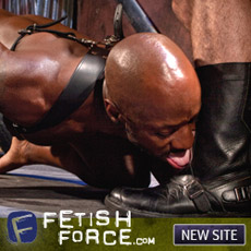 Fetish Force - new site